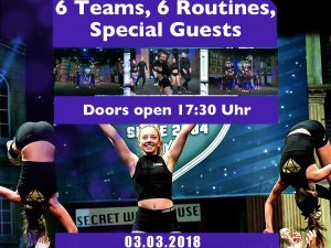 ✨Showcase der Purple Diamonds Allstars✨