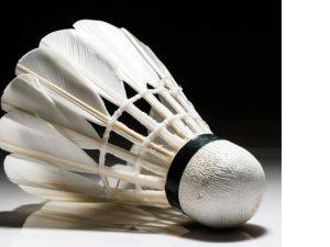 Badmintontraining der Schüler u. Jugend nach den Sommerferien wieder montags u. freitags!